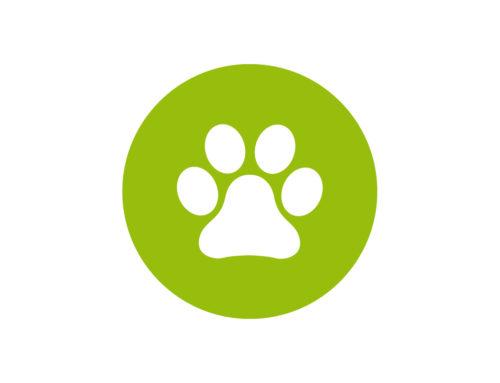 Pfotenzone –Tierarztpraxis Untersievering